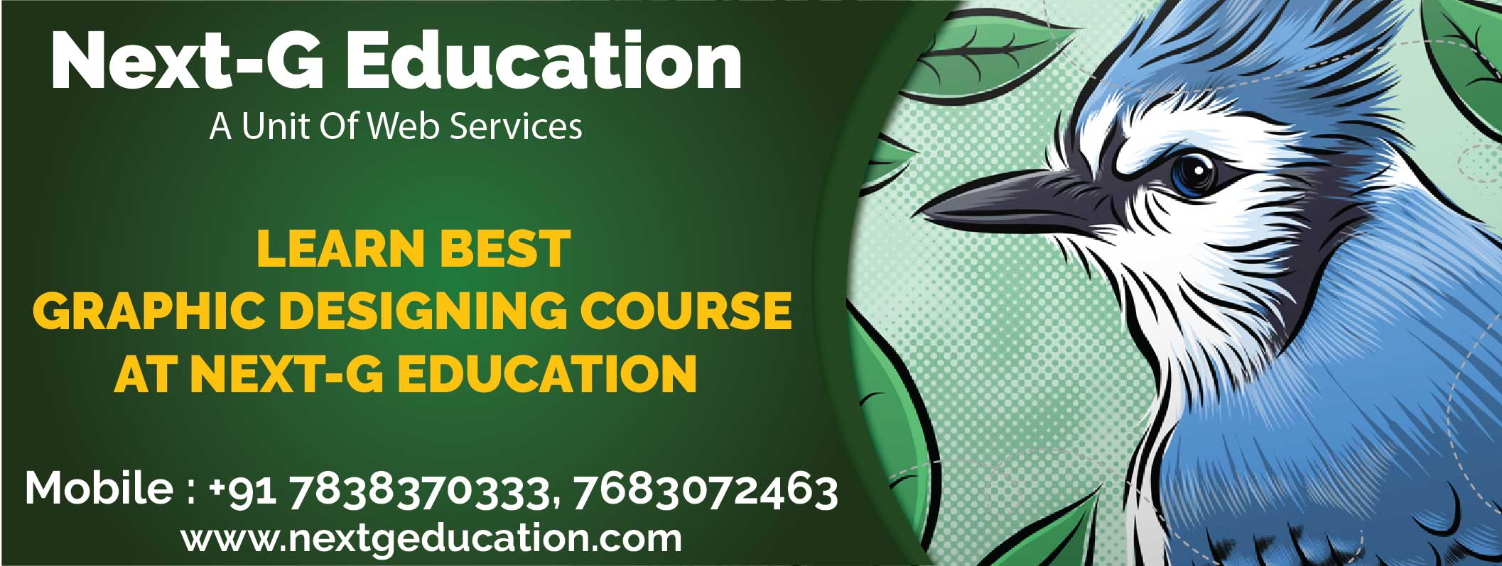 Learn best Graphic Designing Courses at Next-G Education